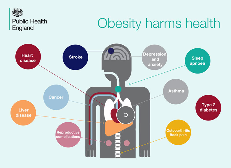 Overweight Harms Health | Insulean