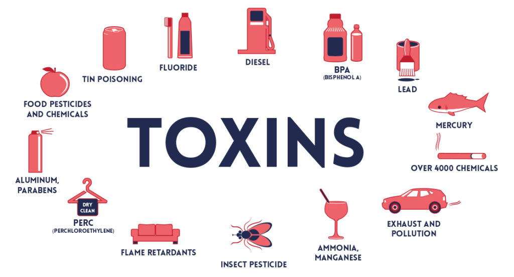 TOXINS & TOXICANTS | INSULEAN