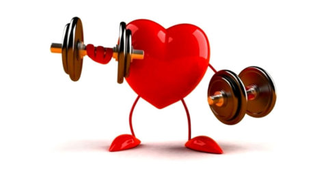 HEART HEALTH |  Dismantling the Cholesterol Obsession | Part 1
