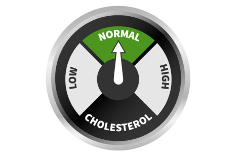LDL CHOLESTEROL – The Inconvenient Truth