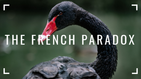 THE FRENCH PARADOX – A Black Swan Event?