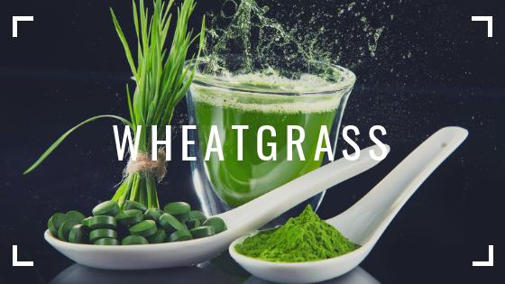 Wheatgrass INSULEAN