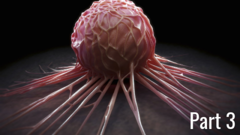 CANCER | The Risk Factors that Matter the Most – Part 3