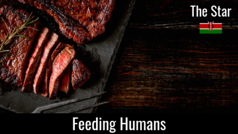 Feeding Humans – The Essential Diet